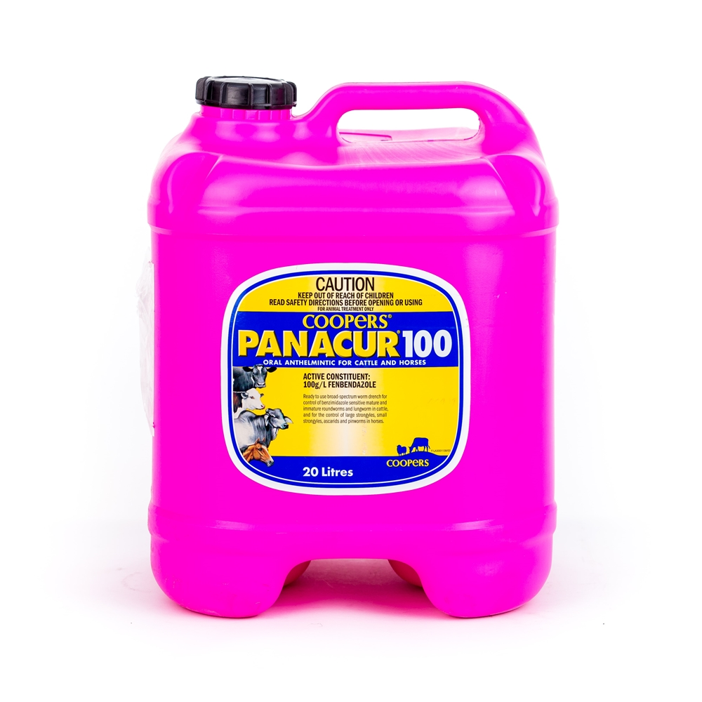 Panacur 100 Oral Anthelmintic For Cattle And Horses (Fenbendazole)