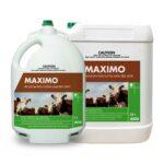 Maximo Pour-On (Moxidectin)